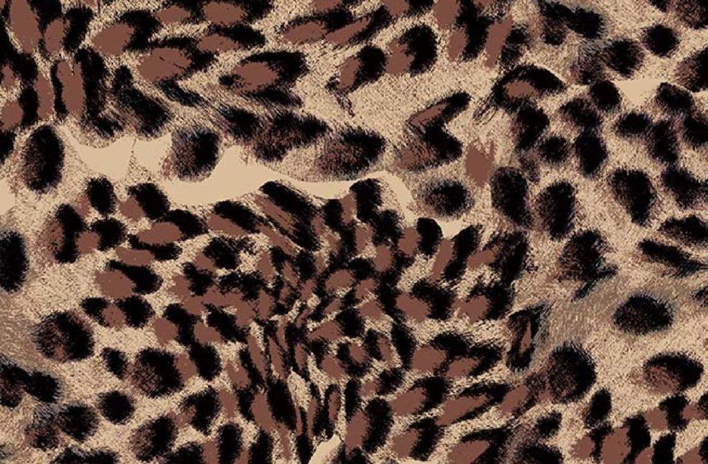 leopard_print_1@2x